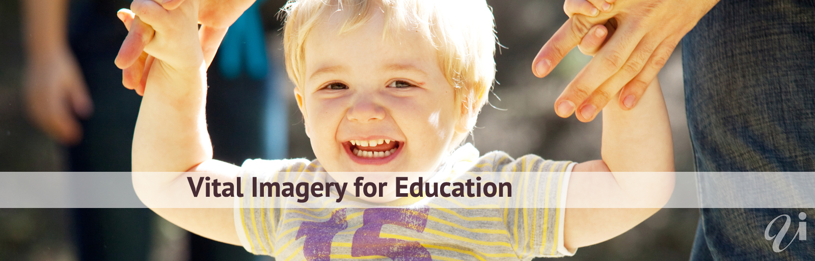 Vital Imagery for Education